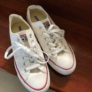 Converse Women's Chuck Taylor All Star Lo Shoe- Optical White