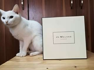 Jo Malone London English Pear and Freesia Cologne
