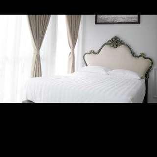 Zetter Suite Cameron Highlands