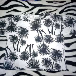 palm trees croptop