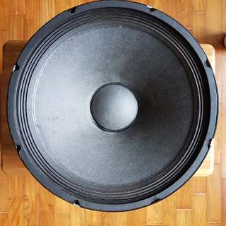 Big and heavy 15 inches EV woofer