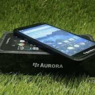 Blackberry Aurora