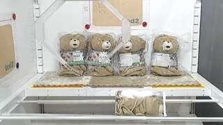 Ted2 Bear Fluffy Blanket