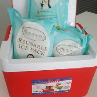Cooler Box with 6 pack Reusable Ice