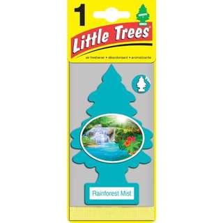 Little Trees🌲 小樹香片 🔶迷霧雨林