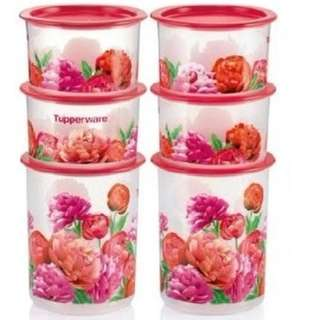 Tupperware One Touch Blooming Peonies Set (6)