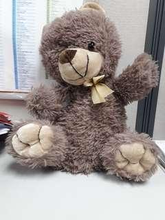 Bear toys R us