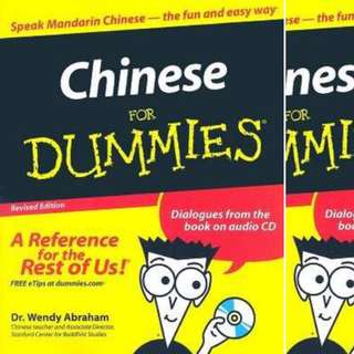 Chinese For Dummies (For Dummies (Language & Literature) by Wendy Abraham
