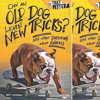 Can an Old Dog Learn New Tricks?: And Other Questions about Animals by Buffy Silverman