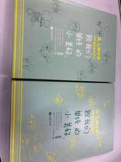 Chinese Novel <A Love So Beautiful>