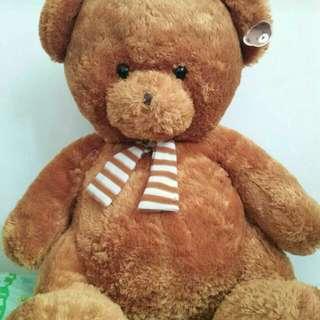 Teddy Bear PRELOVED