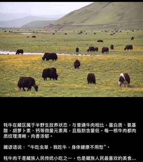 西藏 牦牛牛肉乾