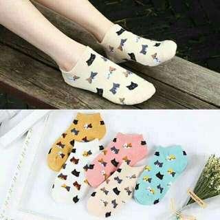 cute cats korean socks
