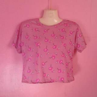 Flamingo crop top (Pink)