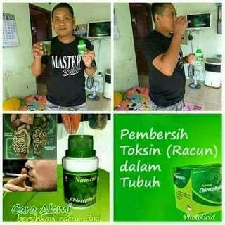 Natural Chlorophyllin (NCP) /Agen Nasa Bekasi 081381429926