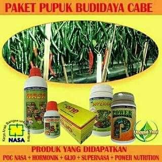 Go Organik Budi Daya Cabai / Agen Nasa Bekasi 081381429926