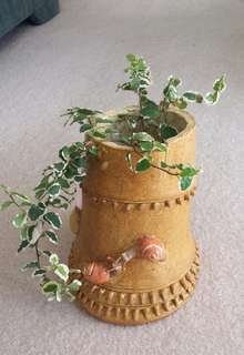 Bamboo shap water holder for plant