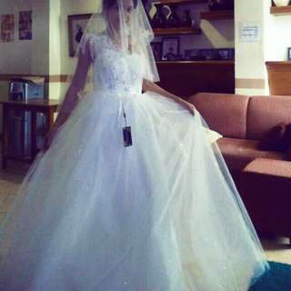 Sequined Wedding Dress (Veil not included)