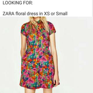 Looking for Zara Dress