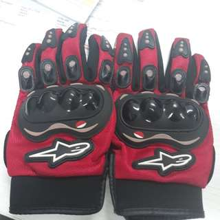 Alpines Star Riding Glove