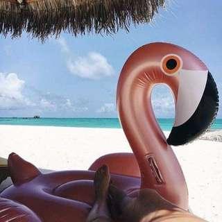 Luxe Rose Gold Flamingo Pool Float (192cm x 180cm x 115cm)