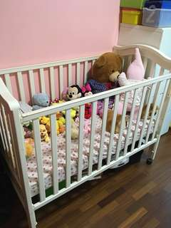 4 in 1 Baby Cot - Solid NZ Pine wood