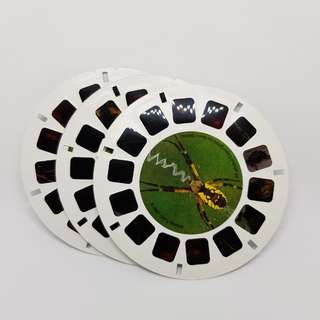(c) 2007 ViewMaster Reels - National Wildlife Federation