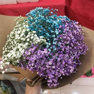Baby Breath Bouquet (subject to colors availability)