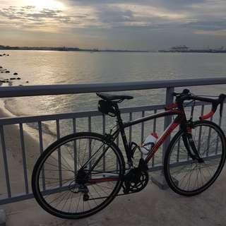 Polygon Road bike