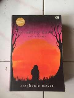 Novel twilight Breaking dawn