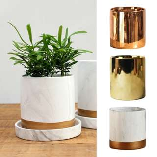 GOLD/ MARBLE PLANT POT/ vase /small/ cactus/flower/rose gold