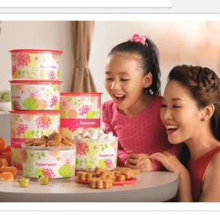 Tupperware spring floral one touch