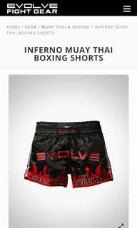 Muay Thai/Boxing Shorts