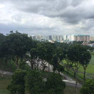 1 bedrooms mins to hillview MRT