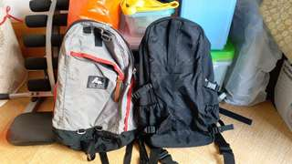 Gregory Backpack, Champion backpack