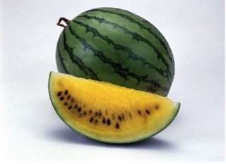 Yellow Watermelon 'Janosik'  (Citrullus Lanatus) seeds