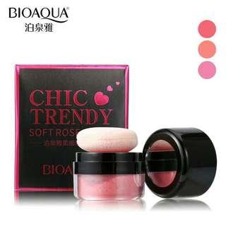 Blush on chic trendy BIOAQUA