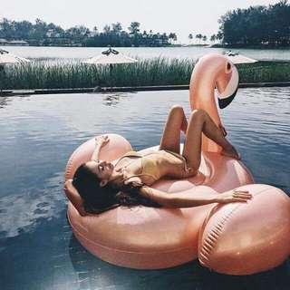 Giant Flamingo Floater