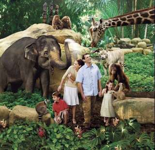Singapore Zoo (with Tram ride)