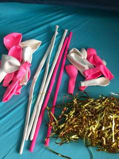 Party balloons (various size)