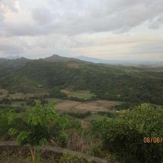Nasugbu Maugat & Utod Batangas Sugarcane Farm Land
