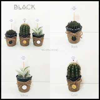 [BLACK] Cactus & Succulents in Personalised Pot