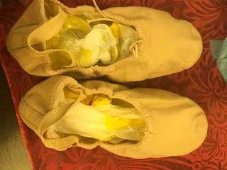 Ballet shoes (2.5D)
