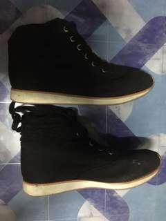 Hi Cut Shoes