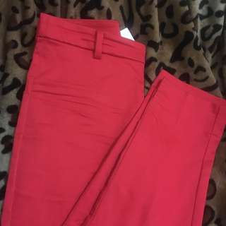 Hot Red Trouser