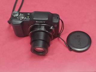 Sony Cyber-shot DSC-H20 10.1 MP Digital Camera with 10x Optical Zoom and Super Steady Shot Image Stabilization
