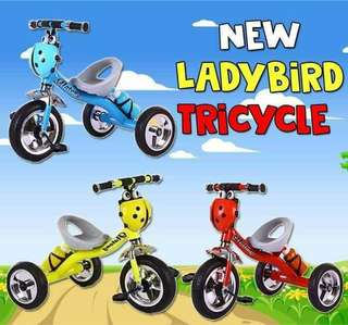 Ladybird Tricycle
