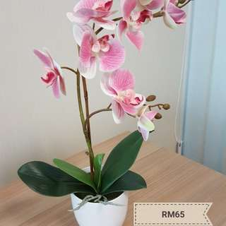 Orchid artificial plant (pre-order)