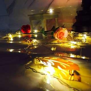 🐯🐯金色羽毛燈串🐯🐯,暖白燈光