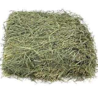 FRESH Hay (below retail pricing)